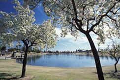 Kiwanis Park lake